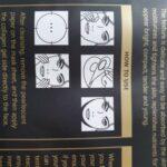 Natural V-Shaped Slimming Mask photo review