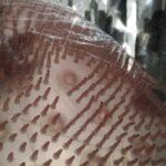 Exfoliating Foot Brush photo review